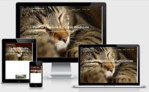 Website erstellen Schweiz